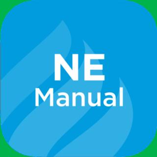 Nurse Executive Review Manual
